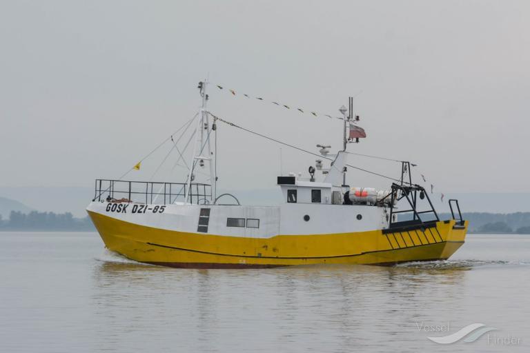 DZI-85 photo