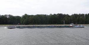 Photo of JANINA ship