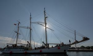 Photo of ZAWISZA CZARNY ship