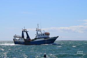 Photo of PIRES COELHO ship