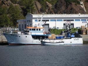 Photo of FILIPA IRMAO ship