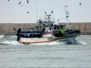 Photo of SERGIO SORAIA ship