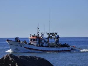Photo of MARIO LUIS ship
