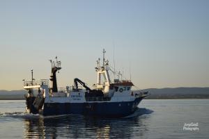 Photo of COSTA SUL ship