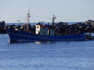 Photo of MILITA ship