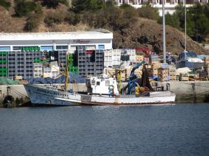 Photo of PEROLA DE SESIMBRA ship