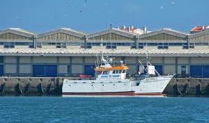 Photo of ALBERTO MIGUEL ship