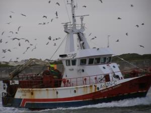 Photo of TRICANA DE AVEIRO ship