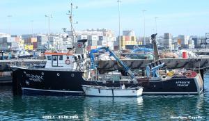 Photo of AFRODITE ship