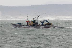Photo of POMBINHO ship