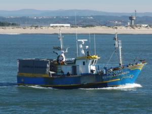 Photo of -ESTRELA CADENTE ship