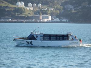 Photo of DOM JOAO ship