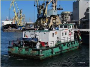Photo of MONDIAL ship