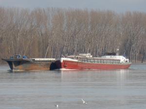 Photo of ANIMA+SL476 << ship