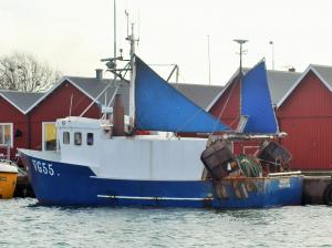 Photo of VG55 INGAROE ship