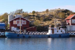 Photo of DELFIN ship