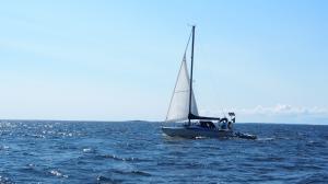 Photo of FRIDOLINA ship