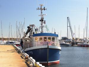 Photo of SIGNORA ship