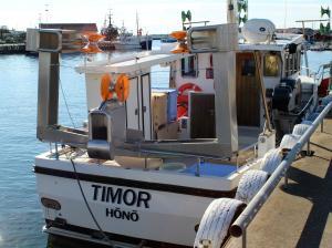 Photo of TIMOR ship