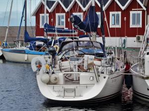 Photo of IN VIVO ship