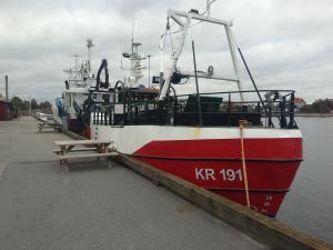 Photo of KR 191 MINDY ship