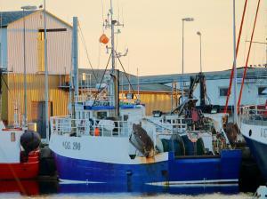 Photo of GLITTFORS ship