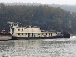 Photo of JAVORINA ship