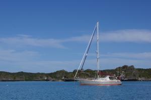 Photo of MOMO-SARUWA ship