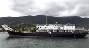 Photo of GARGANEY ship