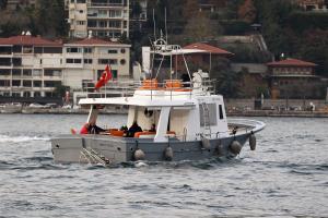 Photo of GREY DOG ship