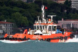 Photo of SARK ship