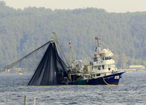 Photo of AVCI KARDESLER-2 ship