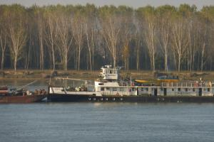 Photo of GAVANA ship