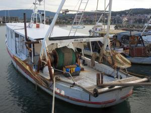 Photo of DEKLICA ship