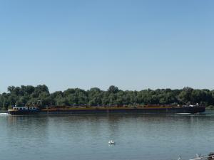 Photo of KARIN IV + 81769 ship