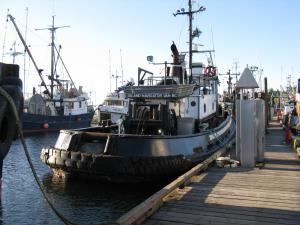 Photo of ISLAND NAVIGATOR ship