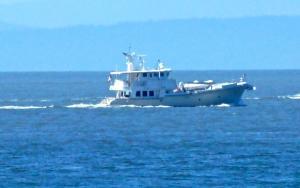 Photo of GIRAFFE ship