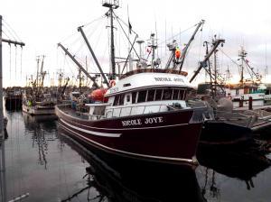 Photo of NICOLE JOYE ship