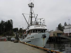 Photo of PACIFIC JOYE ship