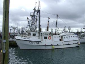 Photo of BRANNTELLE ship