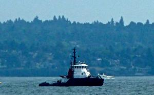 Photo of ISLAND SCOUT ship