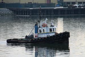Photo of PACIFIC TYEE ship