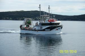 Photo of FINS N SKINS ship