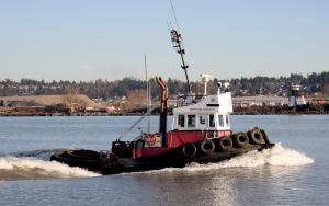 Photo of NORTH ARM WRESTLER ship