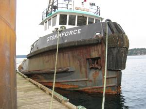 Photo of STORM FORCE ship