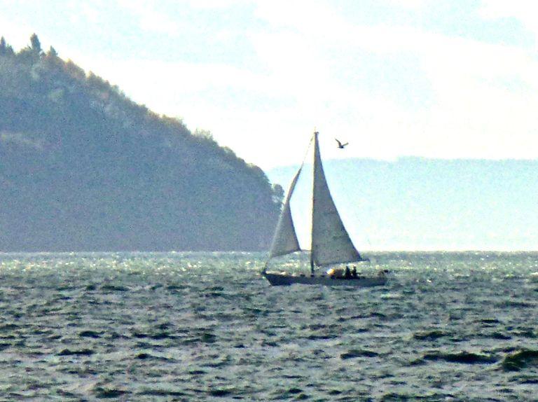 TARAHUMARA photo