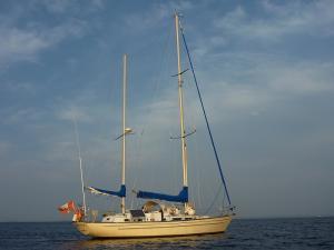 Photo of MIKADO III ship