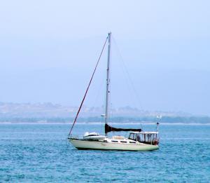 Photo of VERDIA ship