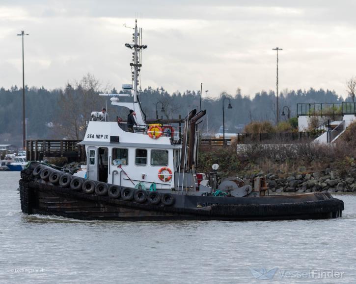 MV SEA IMP IX photo