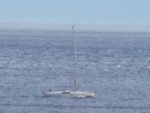 Photo of SAPPHIRE ship